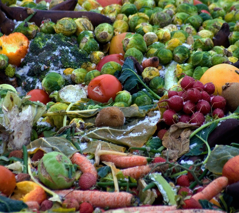 """Odpady gastronomiczne. Kiedy nakompost? Kiedy wyrzucać, akiedy utylizować? Dlaczego """"spuszczenie"""" jedzenia dokanalizacji jest nielegalne? Jak ująć towDokumentacji HACCP? Ico ma ztym wspólnego Sanepid?"""
